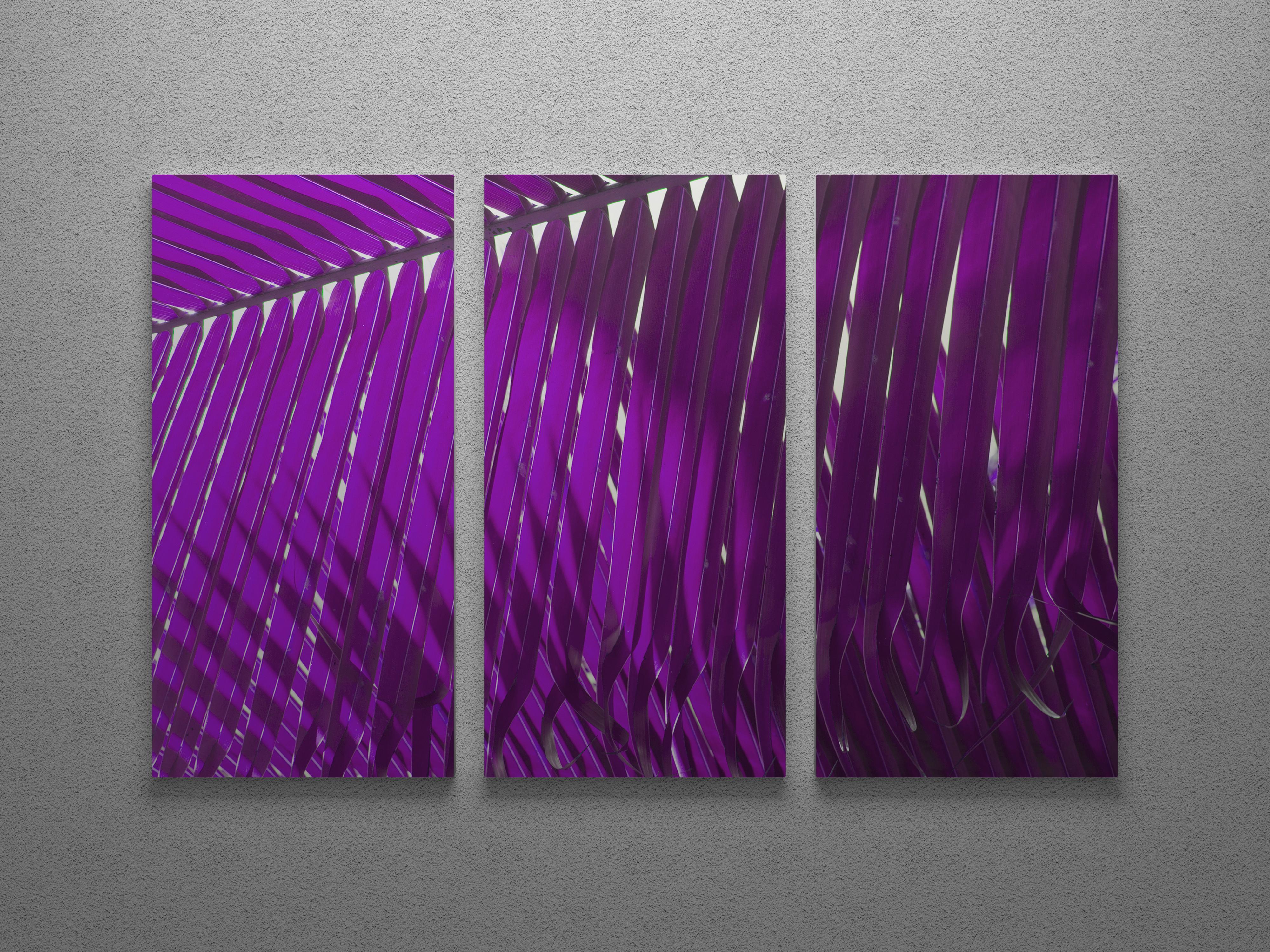 Magenta palm frond triptych