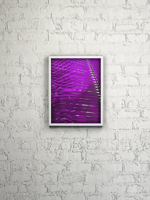 Magenta Palm Picture Framed