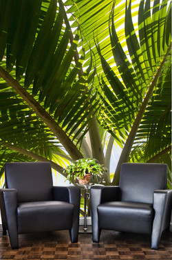 Palm tree designer bespokewall paper