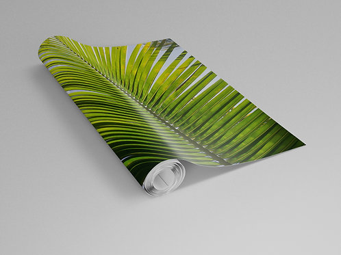 Single Palm Frond Wall Paper