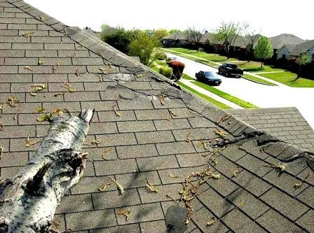 Roofing Dangers And Trees