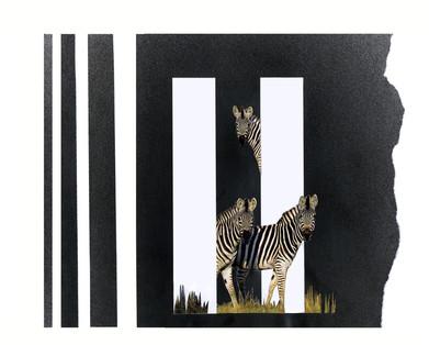 Zebras and Doppler effect