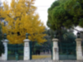 Le Jardin D'Estrela, à Lisbonne