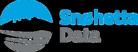 snohetta-data-hovedlogo-rgb_edited.png