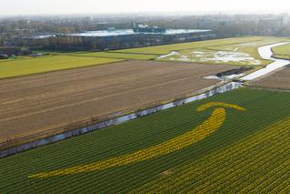 The Launch of Amazon.nl
