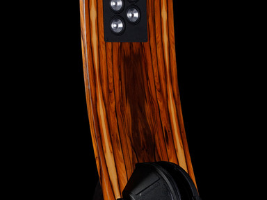 A priori Dipole OB speaker 2_3 view.jpg