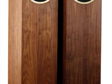 Graal full range speakers 2_3 wood.jpg