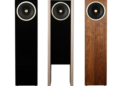 Graal full range speaker variety.jpg