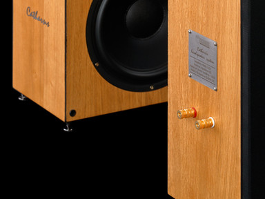 Catharsis three-way speakers woofer clos