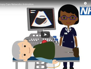 Primary Care Networks (PCNs)