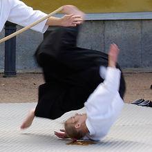 aikido header.jpg