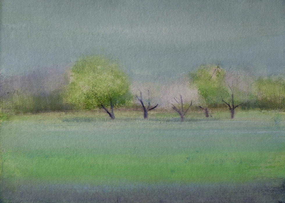 Orchard in Spring by Thomas Lamb