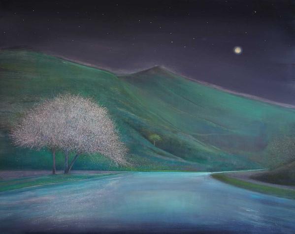 Blossom Trees under the Stars at Night by Thomas Lamb