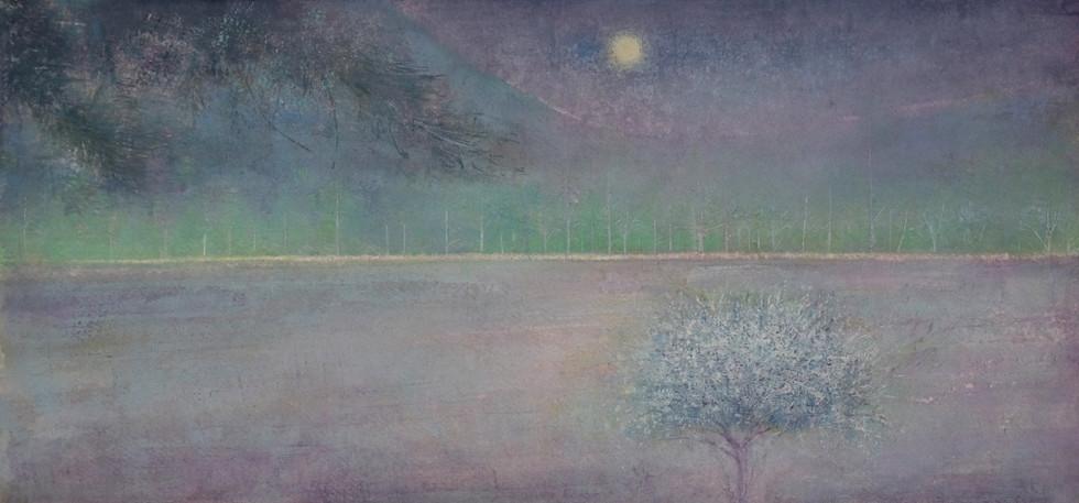 Blosson Tree Summers Evening by Thomas Lamb
