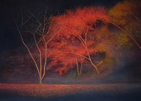 Autumn Tree Night View by Thoams Lamb