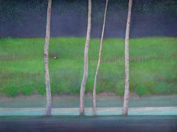 Birch Trees beside River by Thomas Lamb