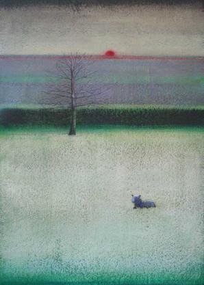 Black Lamb in Spring by Thomas Lamb