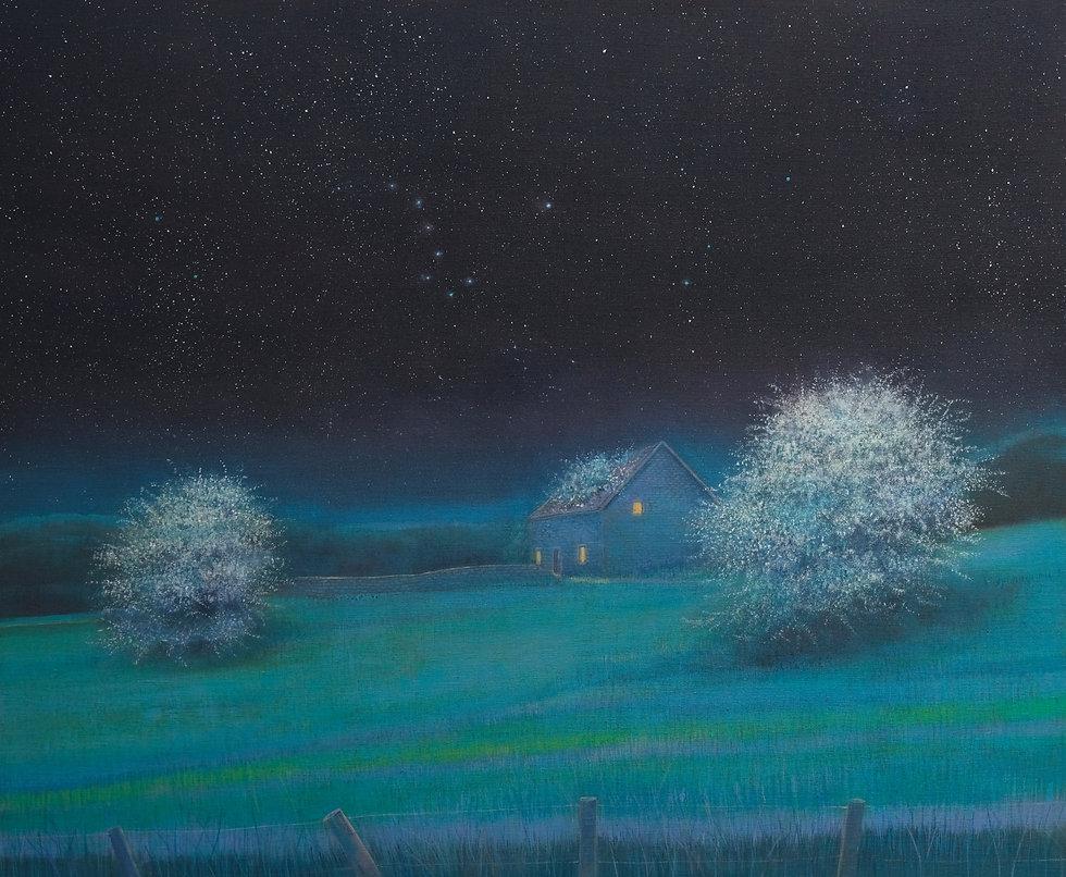 Shepherds Hut under the Night Sky.jpg