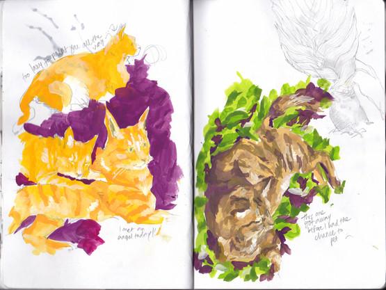 sketch3 copy.jpg