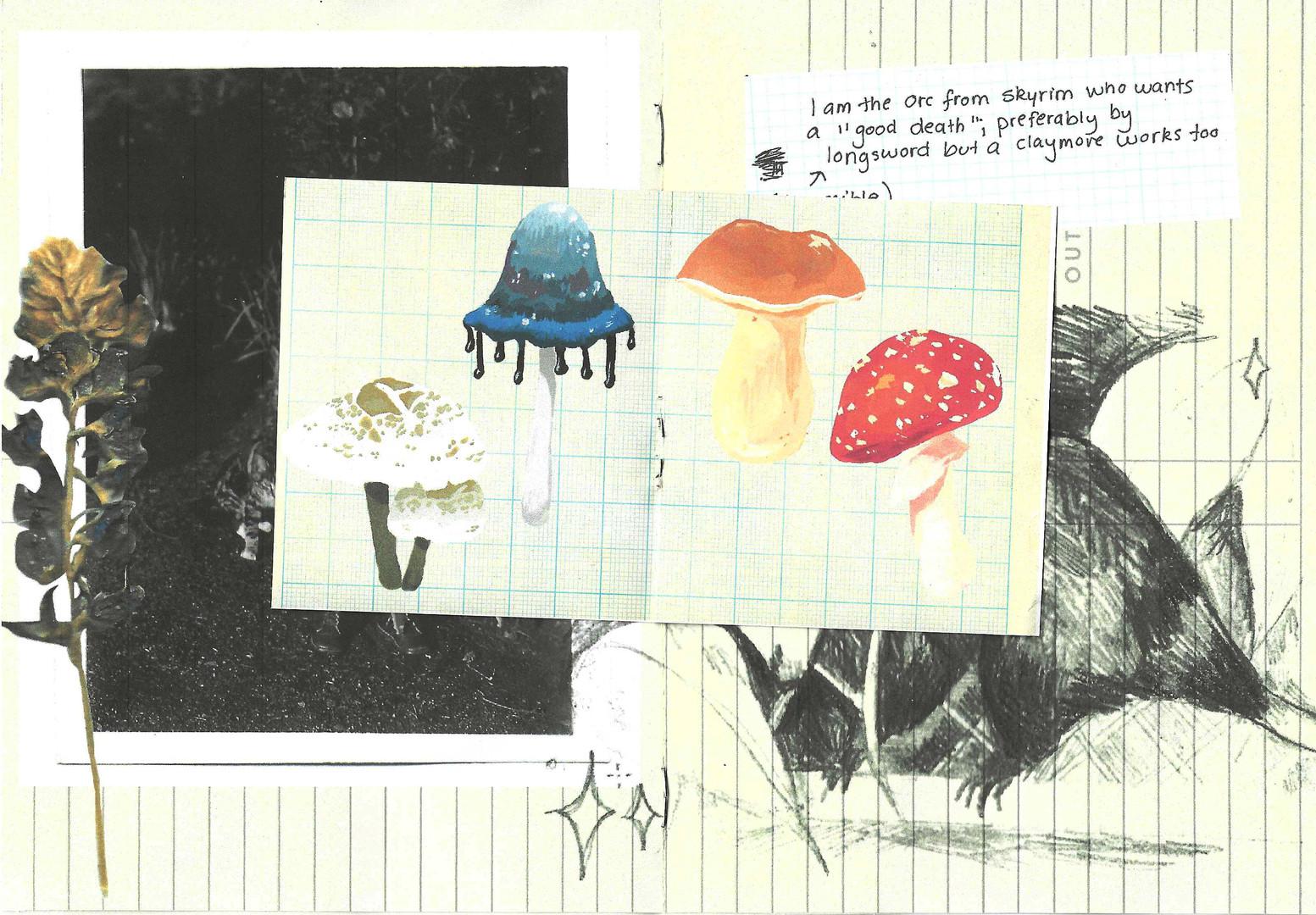 page_2:3 2.jpeg