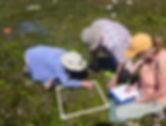 Shorekeepers