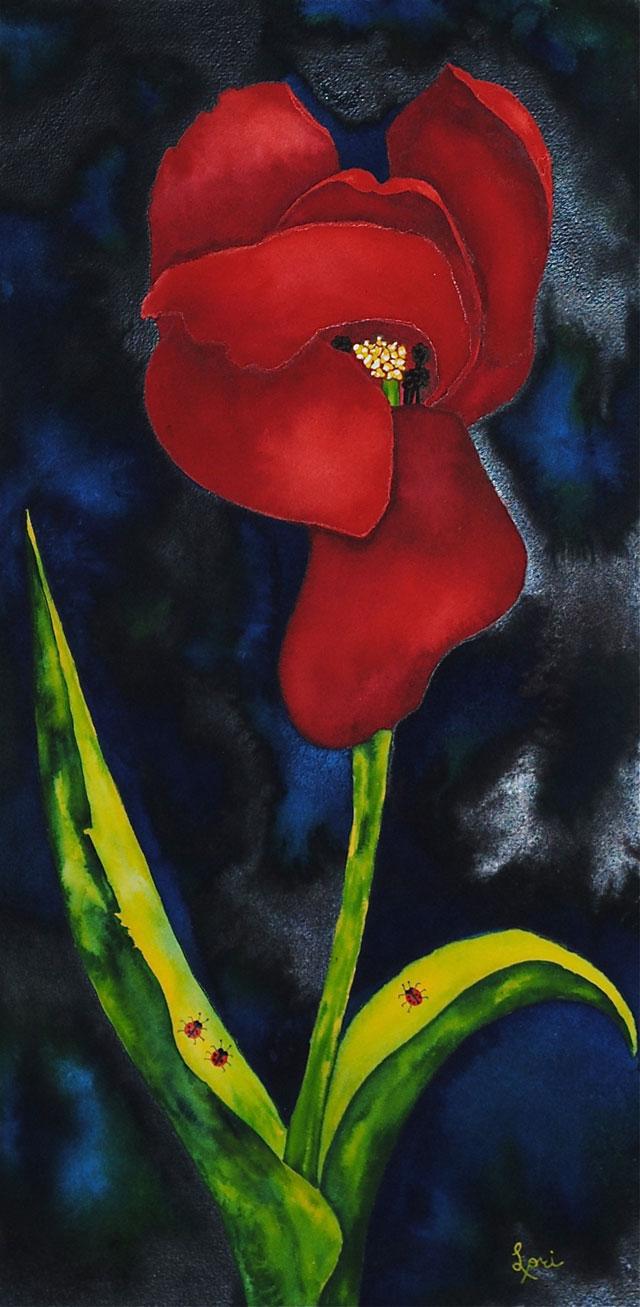 Tulip III Tres Amigos