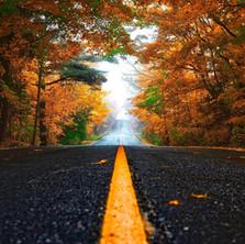 Driving Itineraries