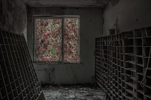 cernobil_0005327-Edit-800.jpg