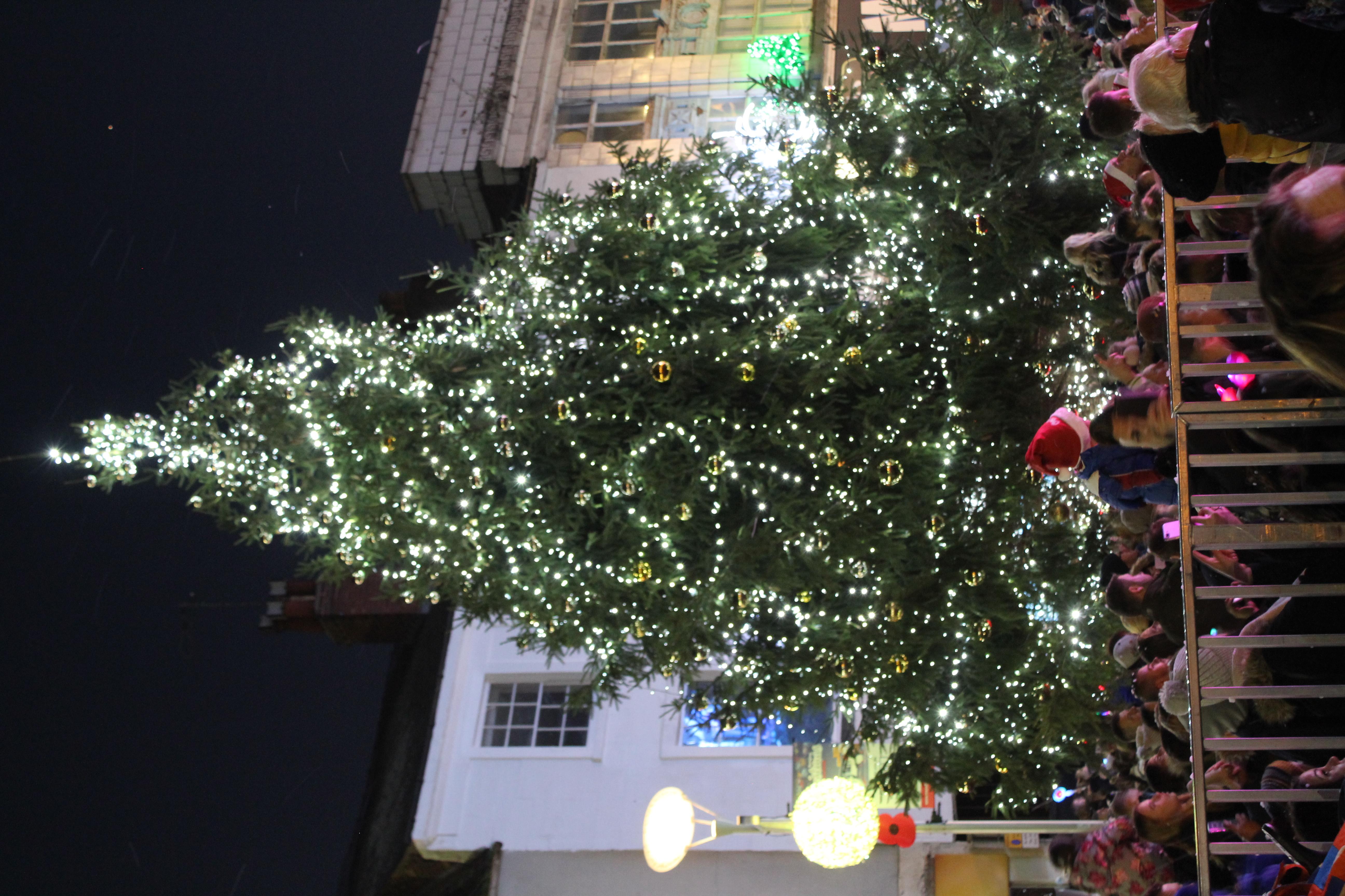 Mansfield's Christmas tree 2018