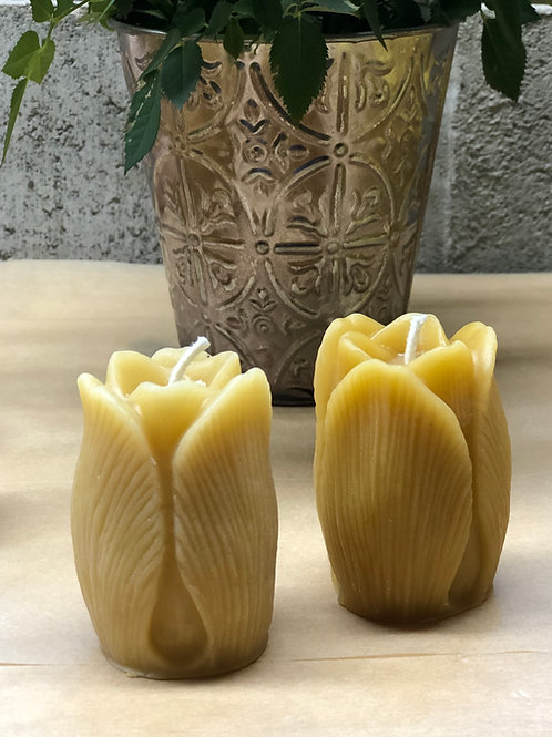 Beeswax Tulip Candle