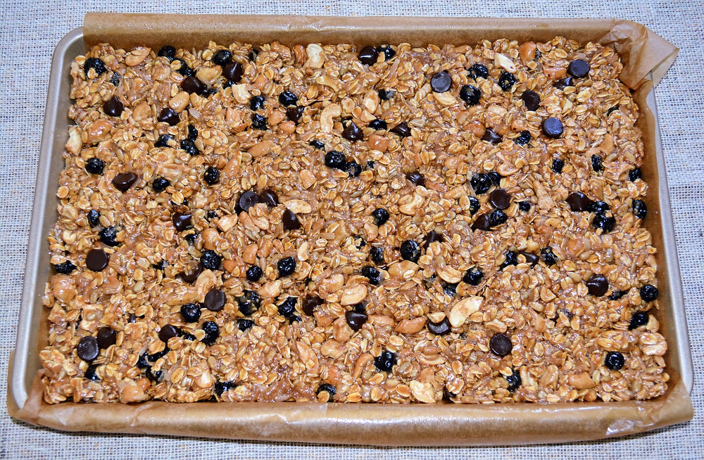 Homemade Chewy Cashew, Coconut, Blueberry Granola Bars