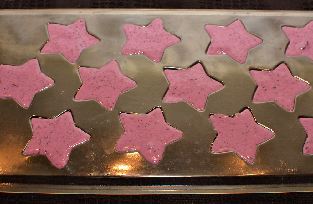 Blueberry Layer of Frozen Peanut Butter Blueberry Dog Treats