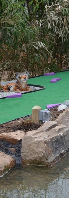 Tiger Hole