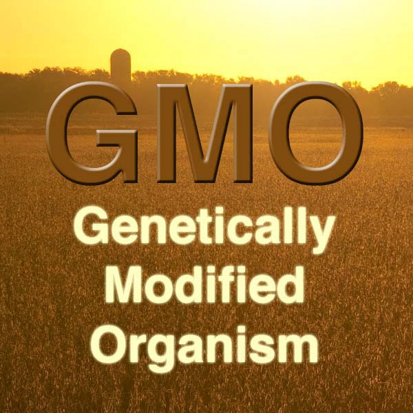 What Are GMOs, and Should I Be Worried About Them?
