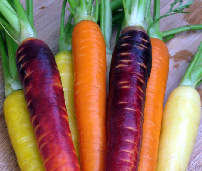 Top 10 reasons for eating Carrots