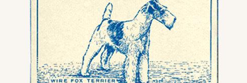 Samlekort TURF: Wire Fox Terrier