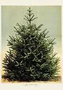 Juletræ Vintage