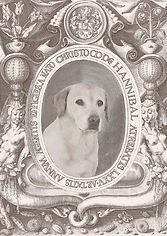 labrador, print, egen hund på foto, min hund foto, kobberstik hund, personligt foto, print kæledyr, print hund,