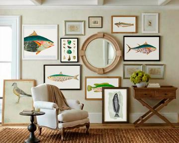 FISK SHOW WEB.jpg