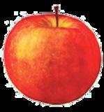 æble rødt.png