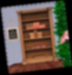FLAMINGO MOCKUP BAGSIDE_edited.png