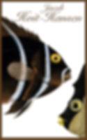 SK FISK 2 WEB.jpg