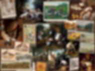 PV JAGT WEB.jpg