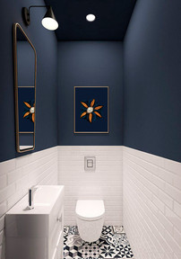 clematis toilet SHOW.jpg