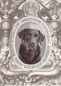 din hund som foto, hund personlig, personligt foto, personlig grafik, personlig print, min hund som foto,