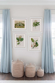 White Magnolias Serie sovev SHOW.jpg