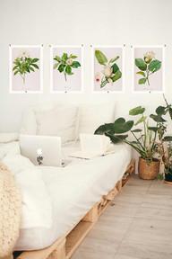 White Magnolias teen SHOW.jpg