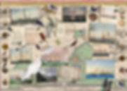 DANSKE SKIBE  WEB.jpg