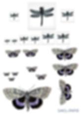 insekt tapet WEB.jpg
