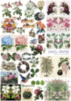 flowers vintage LOW.jpg
